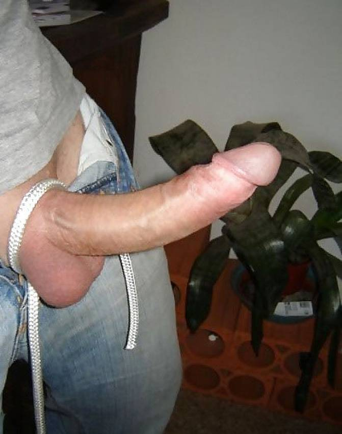 Massive tits with rock hard dick