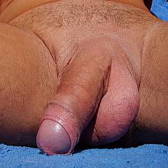 Gay knob.
