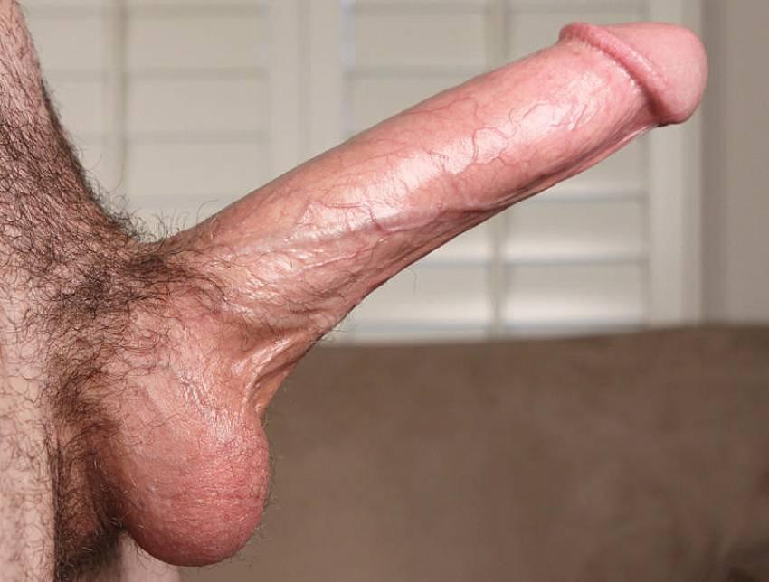 фото красивых больших мужских половых органов членов