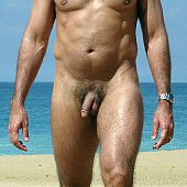 Tanned undressed guys on the nudist beaches.