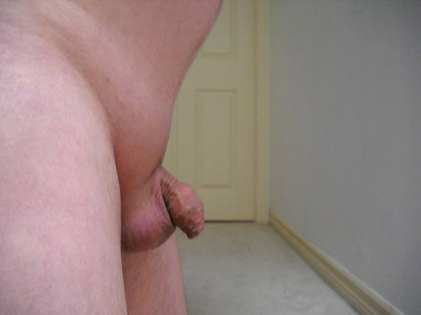 Free Gay Small Cock Gallerie